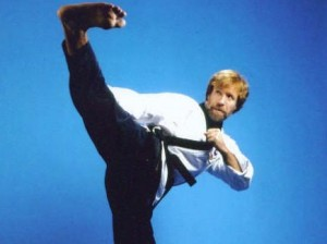 chuck_norris_roundhouse_kick
